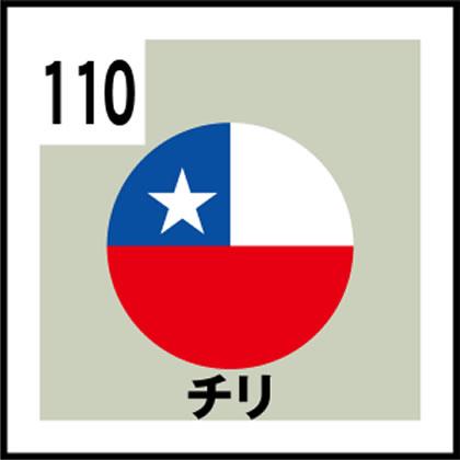 110-チリ