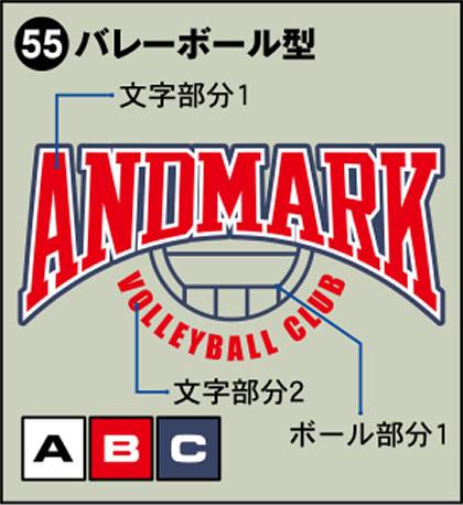 55-バレーボール型
