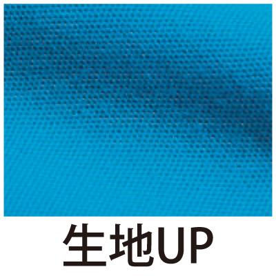 00117-VPT